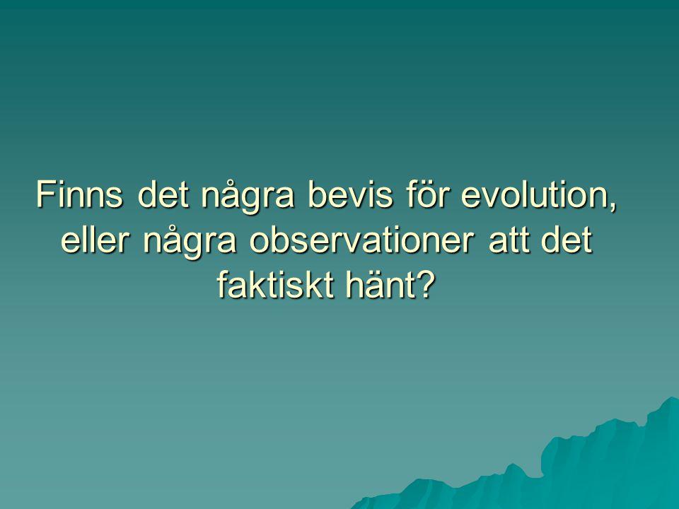 Finns det några bevis för evolution, eller några observationer att det faktiskt hänt