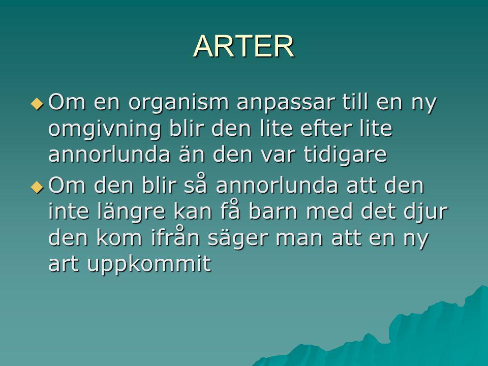 ARTER Om en organism anpassar till en ny omgivning blir den lite efter lite annorlunda än den var tidigare.