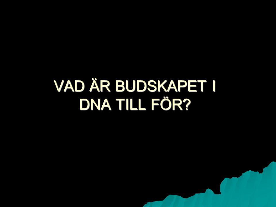 VAD ÄR BUDSKAPET I DNA TILL FÖR
