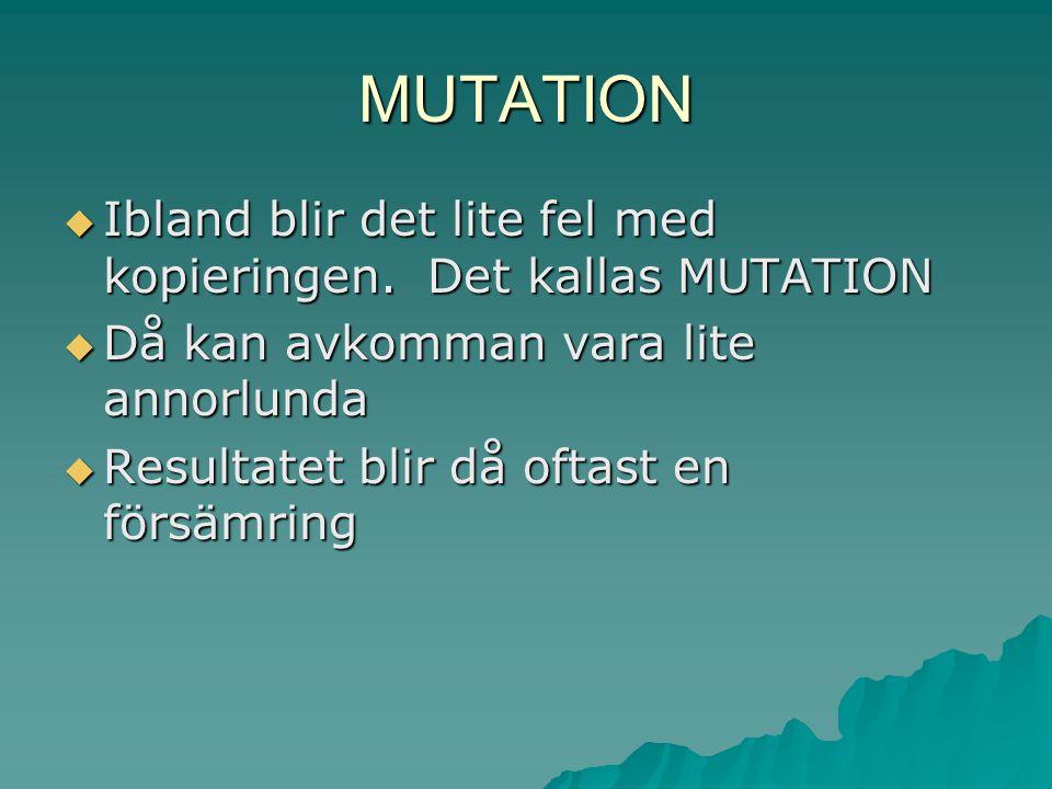 MUTATION Ibland blir det lite fel med kopieringen. Det kallas MUTATION