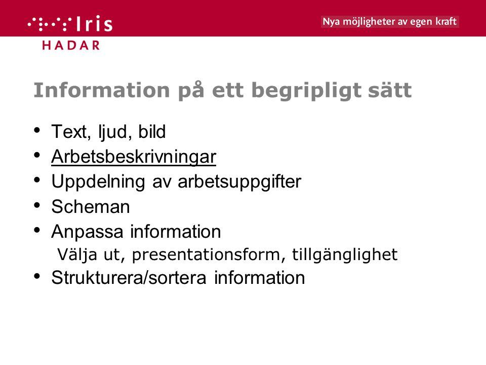 Information på ett begripligt sätt