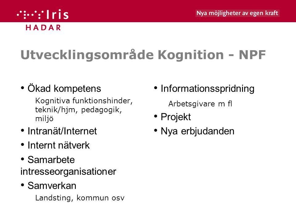 Utvecklingsområde Kognition - NPF