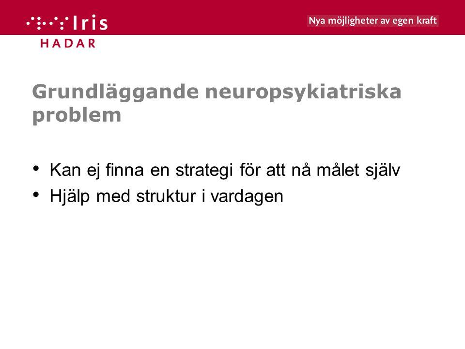 Grundläggande neuropsykiatriska problem