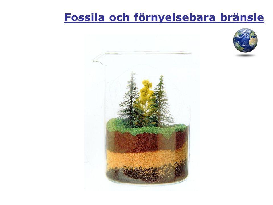 Fossila och förnyelsebara bränsle