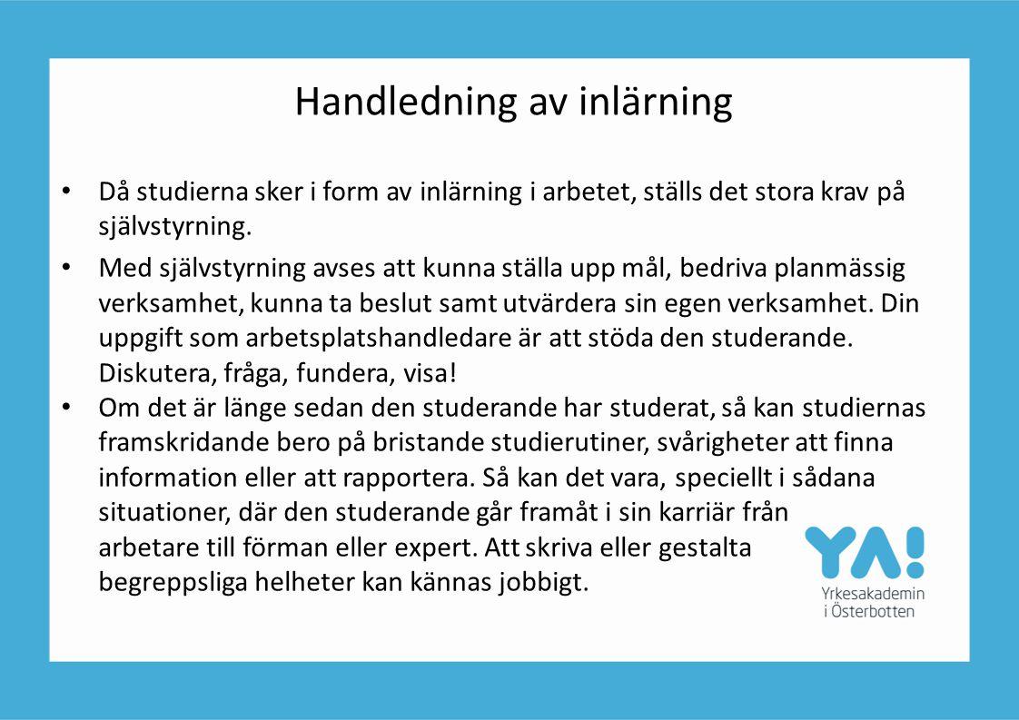 Handledning av inlärning