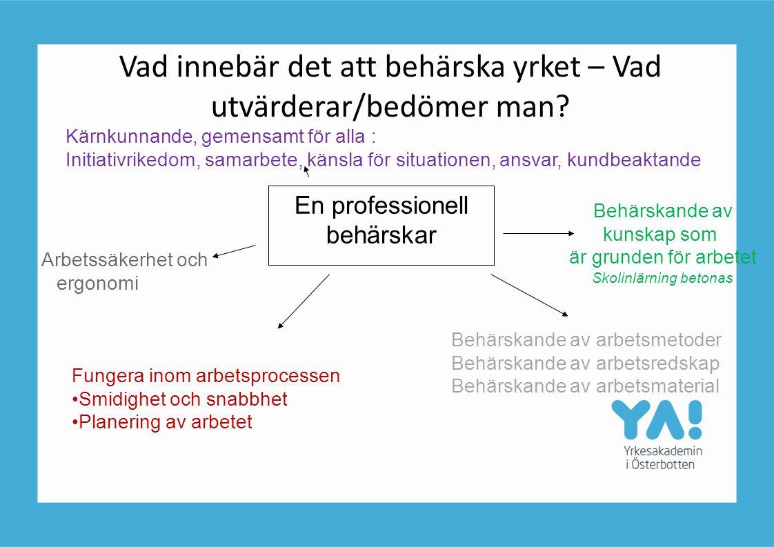 Vad innebär det att behärska yrket – Vad utvärderar/bedömer man