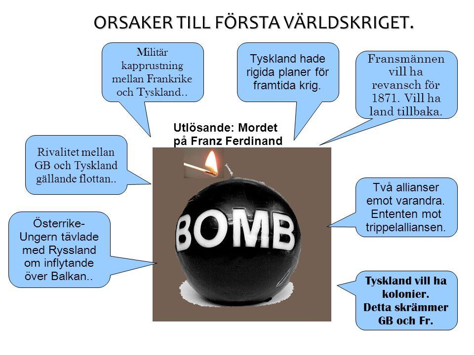 ORSAKER TILL FÖRSTA VÄRLDSKRIGET.