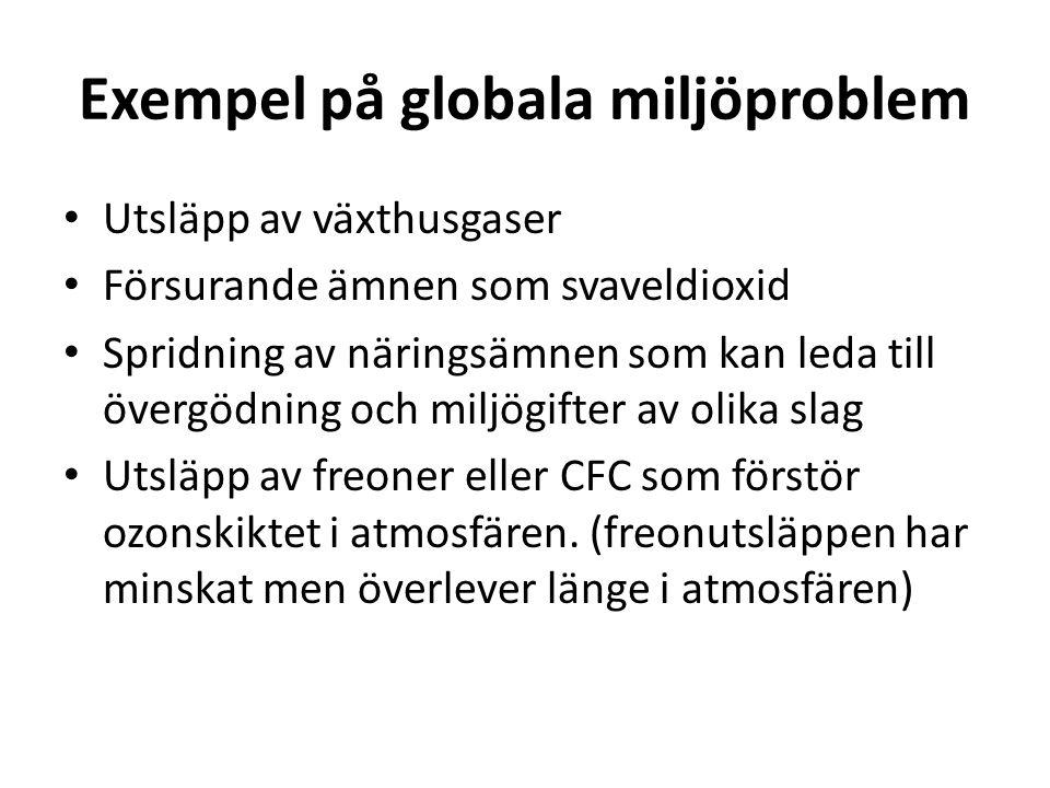 Exempel på globala miljöproblem