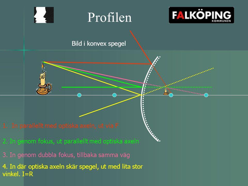 Profilen Bild i konvex spegel