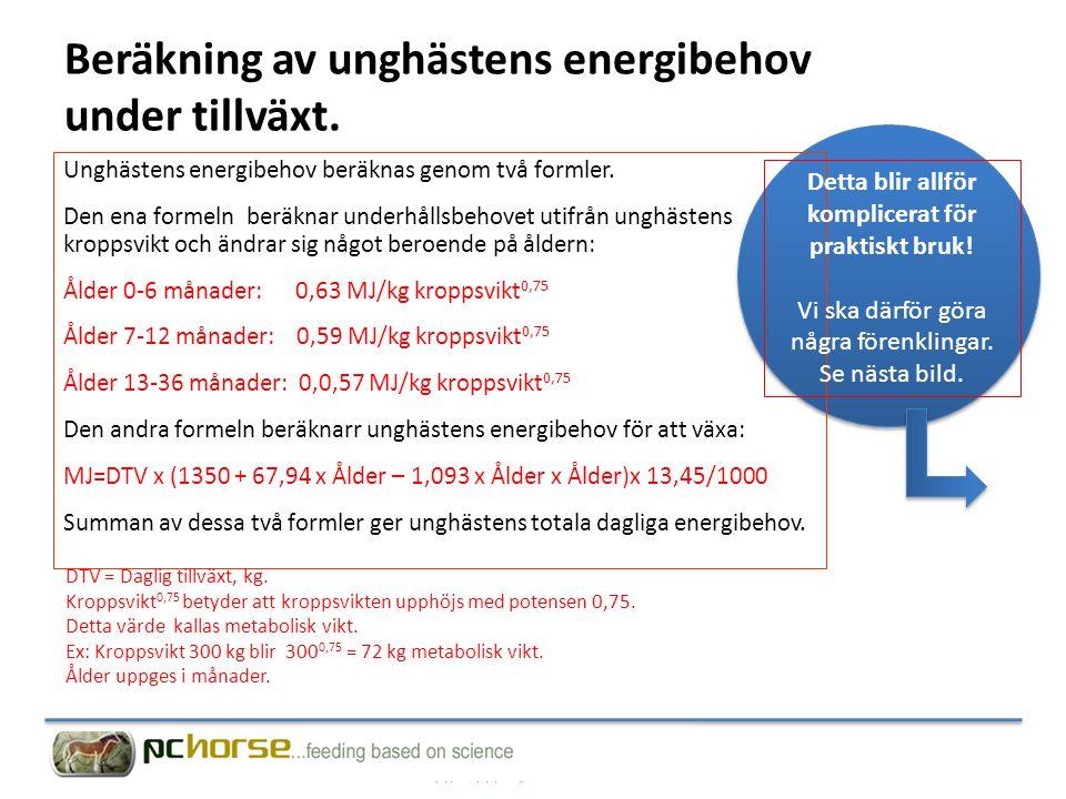 Beräkning av unghästens energibehov under tillväxt.