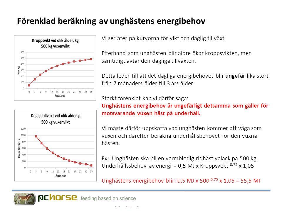 Förenklad beräkning av unghästens energibehov
