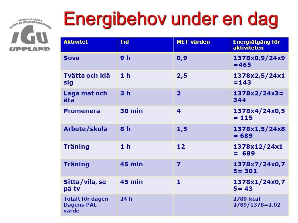 Energibehov under en dag