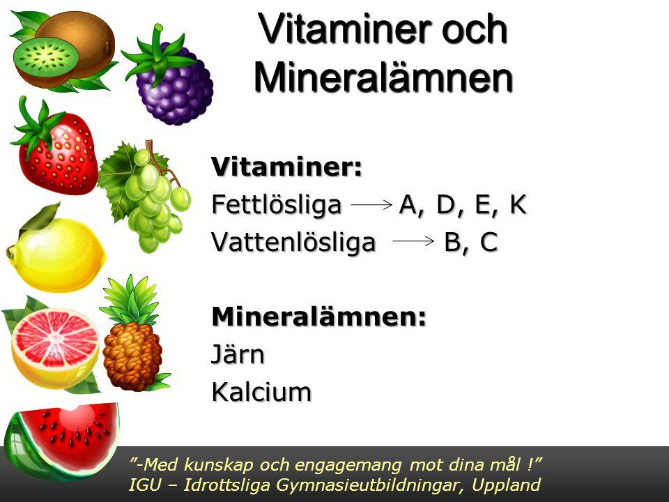 Vitaminer och Mineralämnen