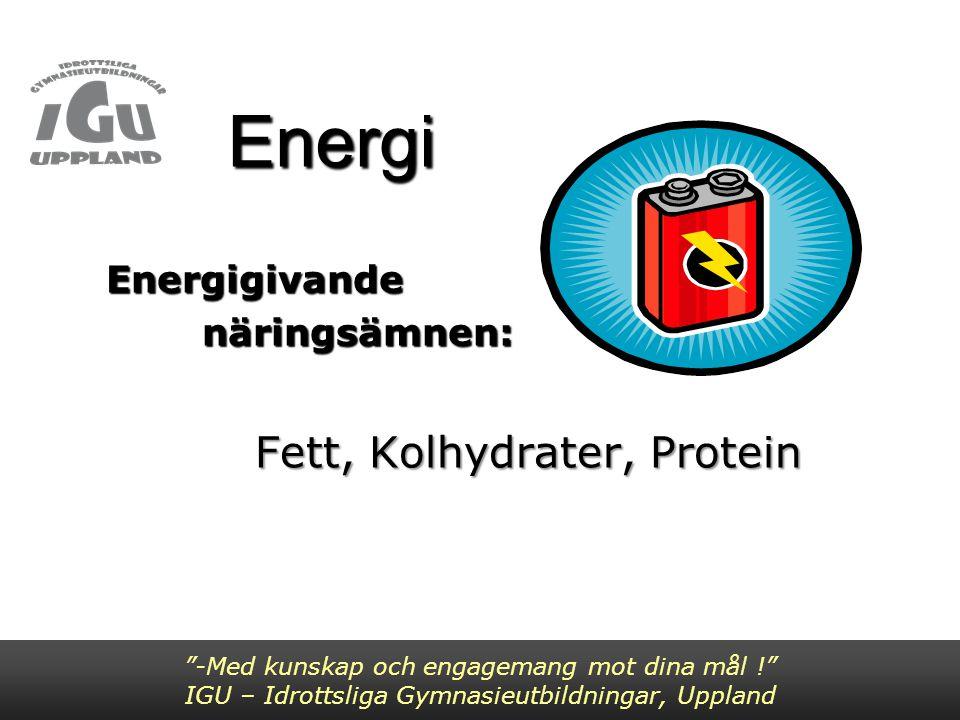 Energigivande näringsämnen: Fett, Kolhydrater, Protein