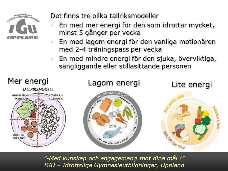 Mer energi Lagom energi Lite energi