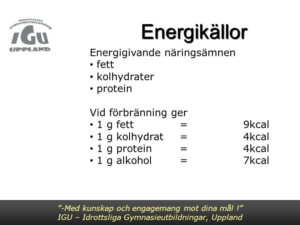 Energikällor Energigivande näringsämnen fett kolhydrater protein