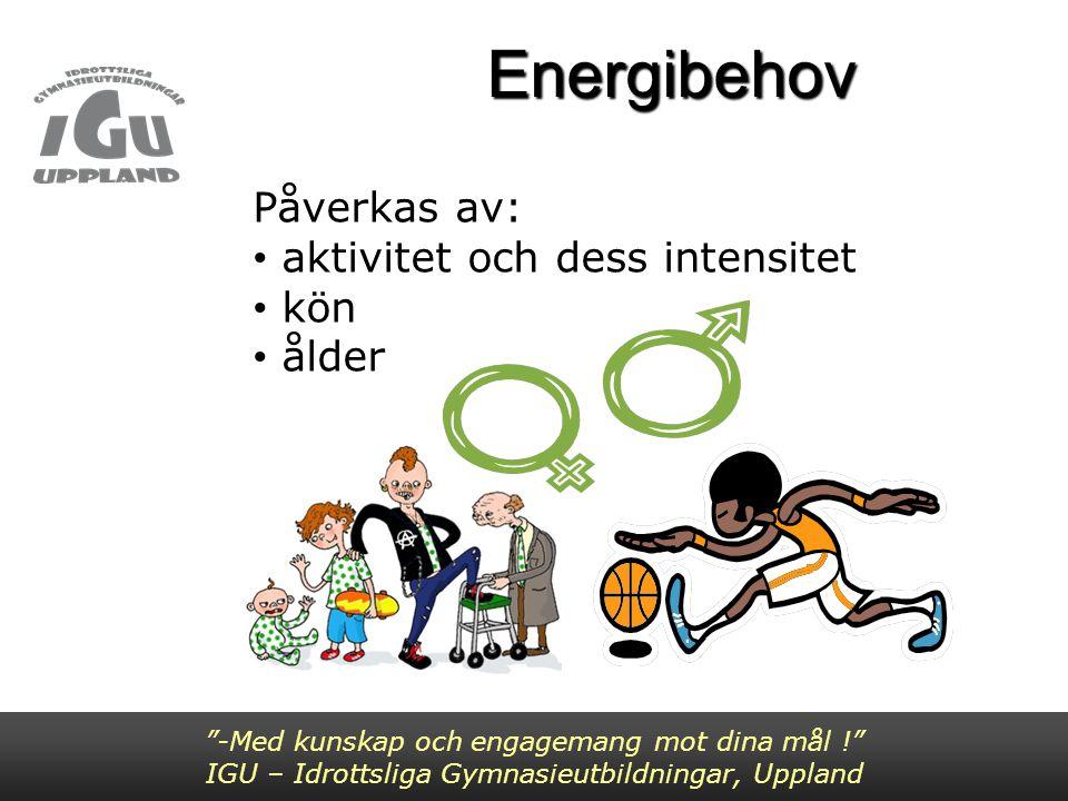 Energibehov Påverkas av: aktivitet och dess intensitet kön ålder