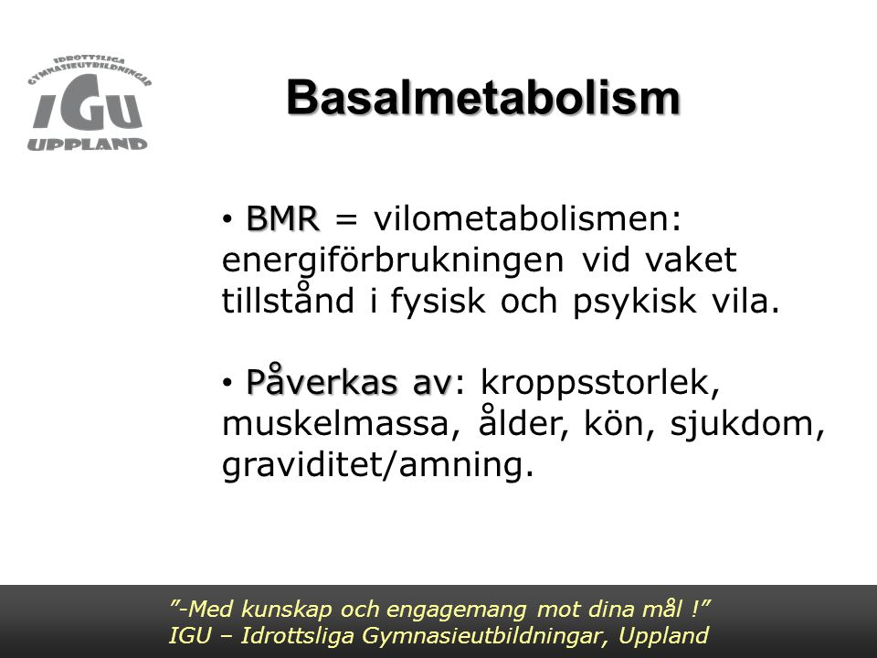Basalmetabolism BMR = vilometabolismen: energiförbrukningen vid vaket tillstånd i fysisk och psykisk vila.