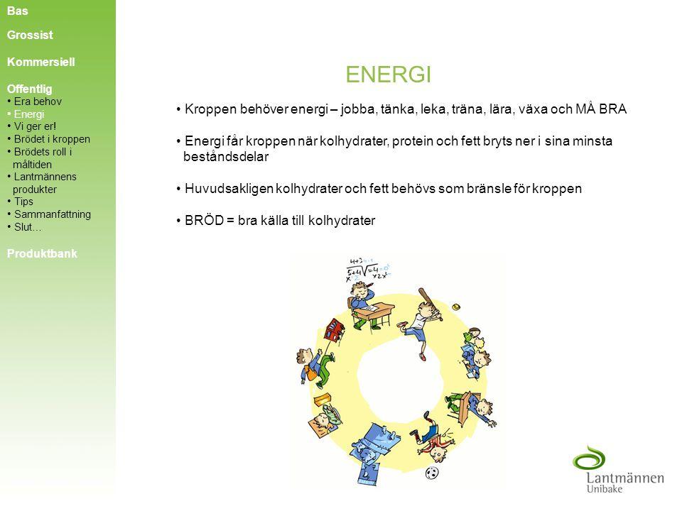 Bas Grossist. Kommersiell. ENERGI. Offentlig. Era behov. Kroppen behöver energi – jobba, tänka, leka, träna, lära, växa och MÅ BRA.