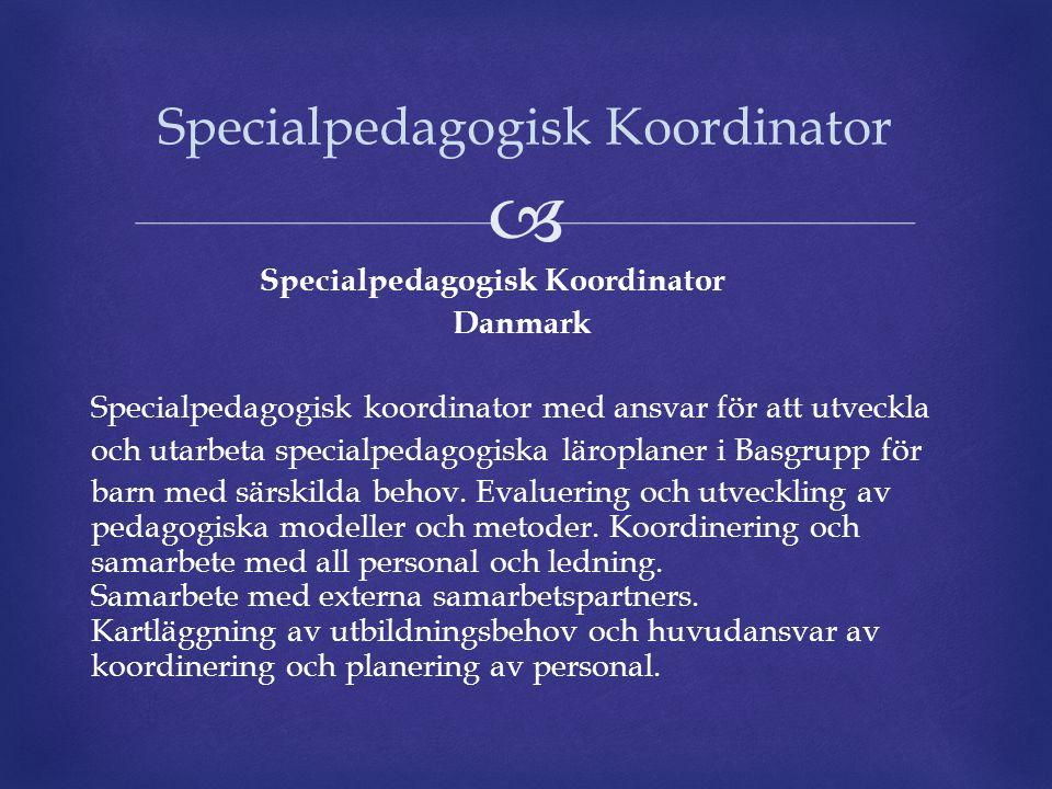Specialpedagogisk Koordinator