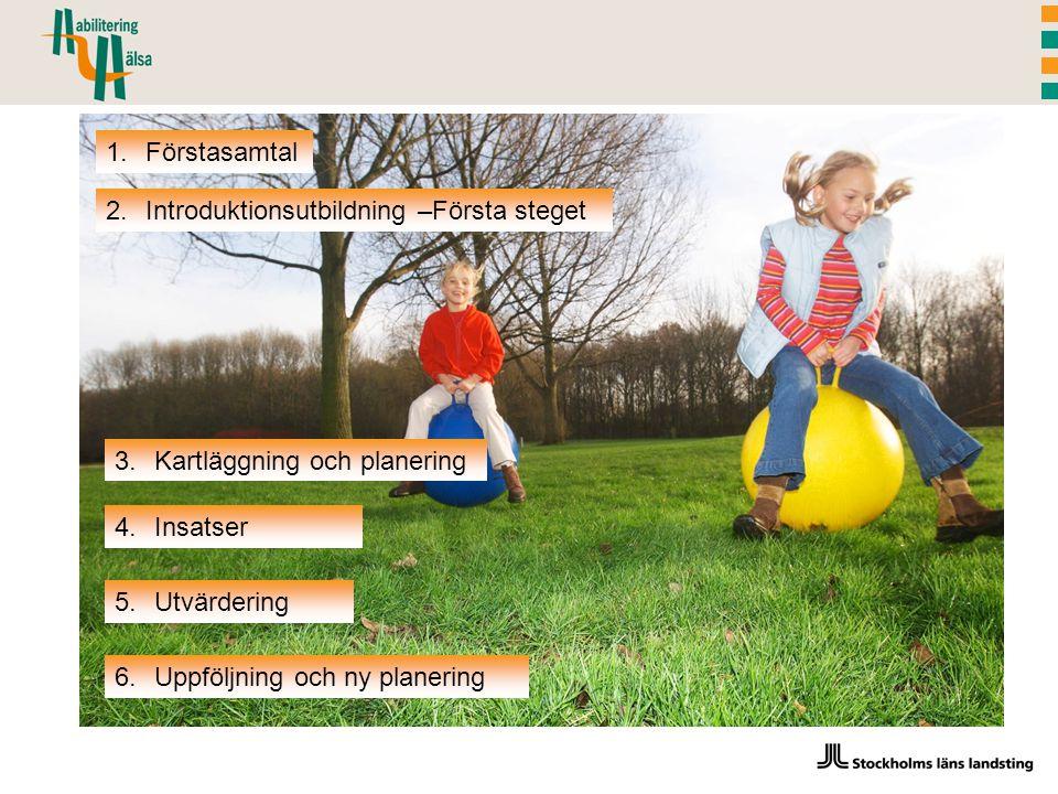 Förstasamtal Introduktionsutbildning –Första steget. Kartläggning och planering. Insatser. Utvärdering.