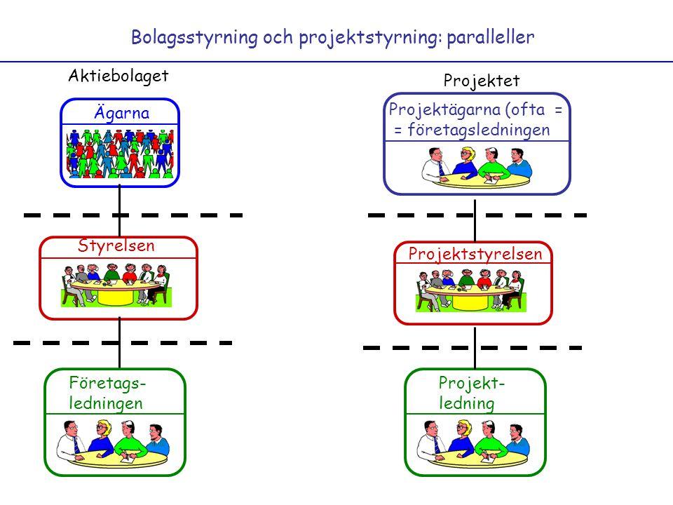 Bolagsstyrning och projektstyrning: paralleller