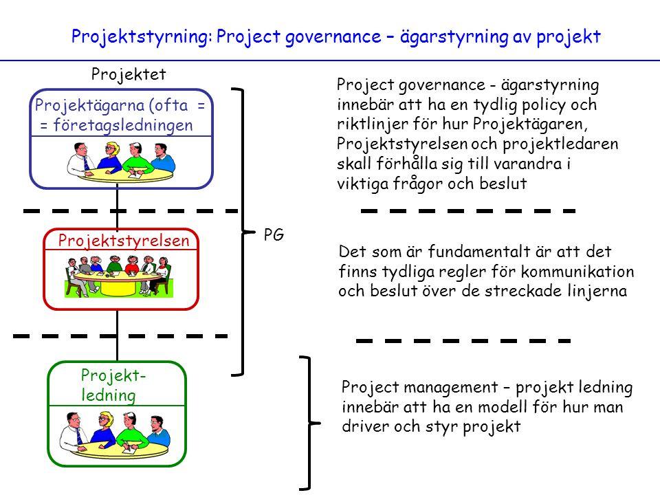 Projektstyrning: Project governance – ägarstyrning av projekt