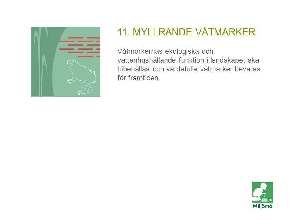 11. MYLLRANDE VÅTMARKER