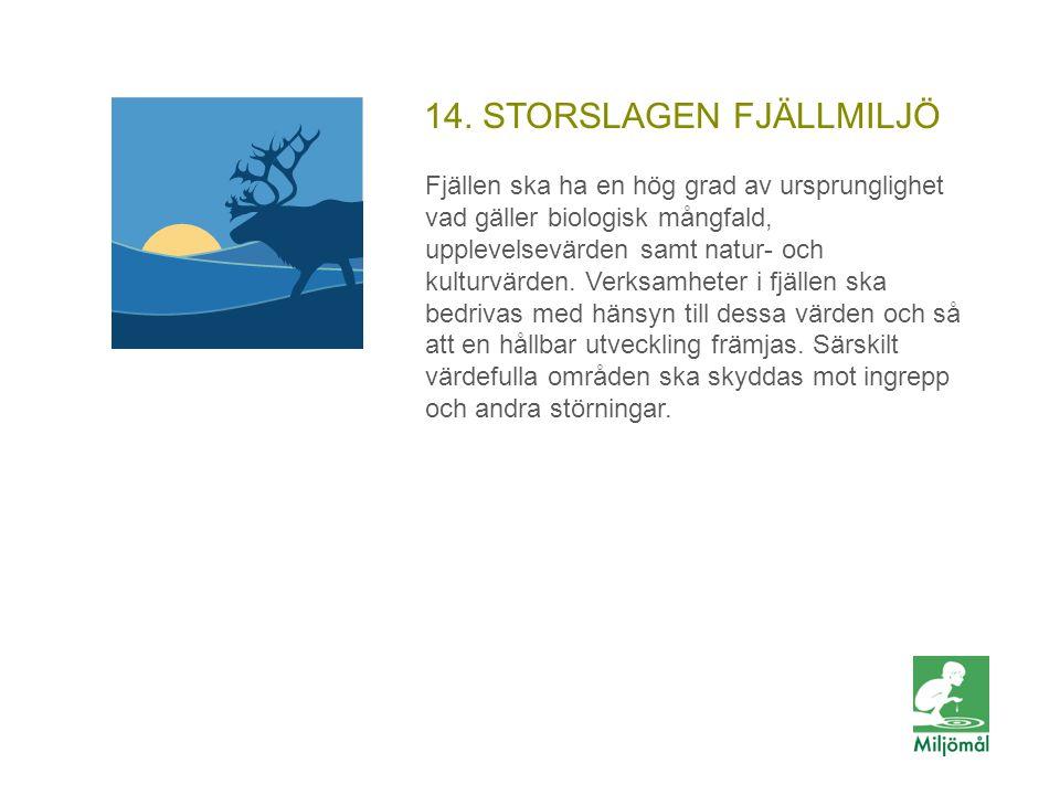 14. STORSLAGEN FJÄLLMILJÖ