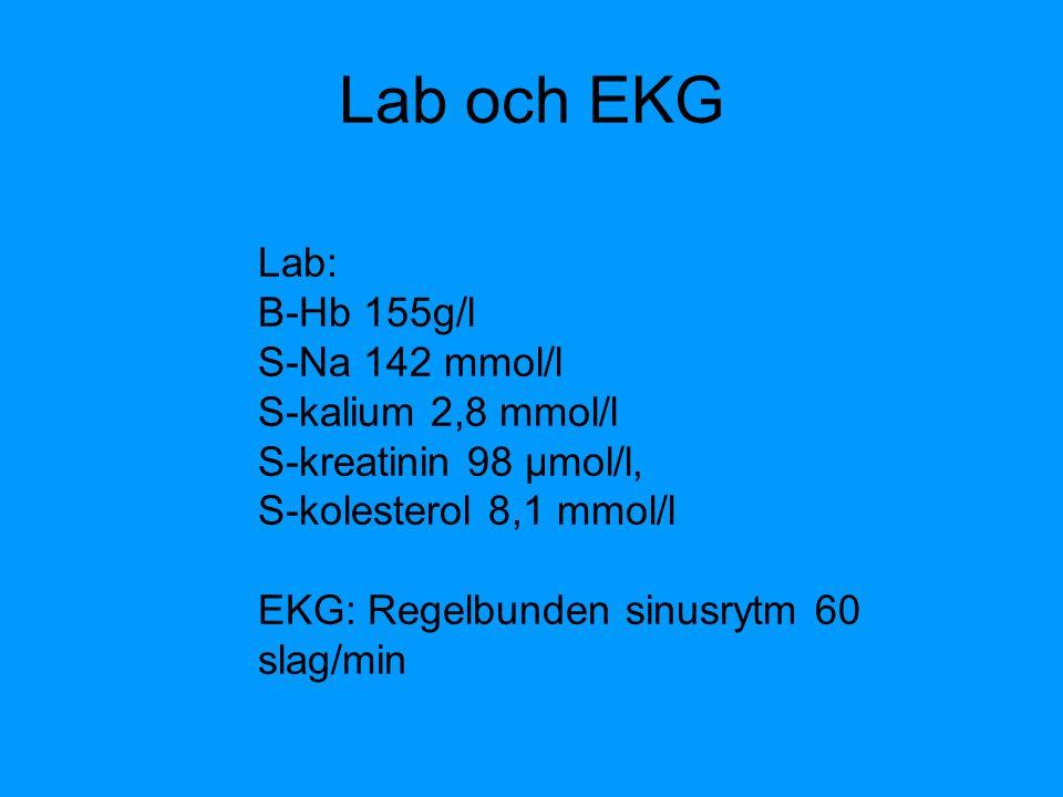 Lab och EKG Lab: B-Hb 155g/l S-Na 142 mmol/l S-kalium 2,8 mmol/l