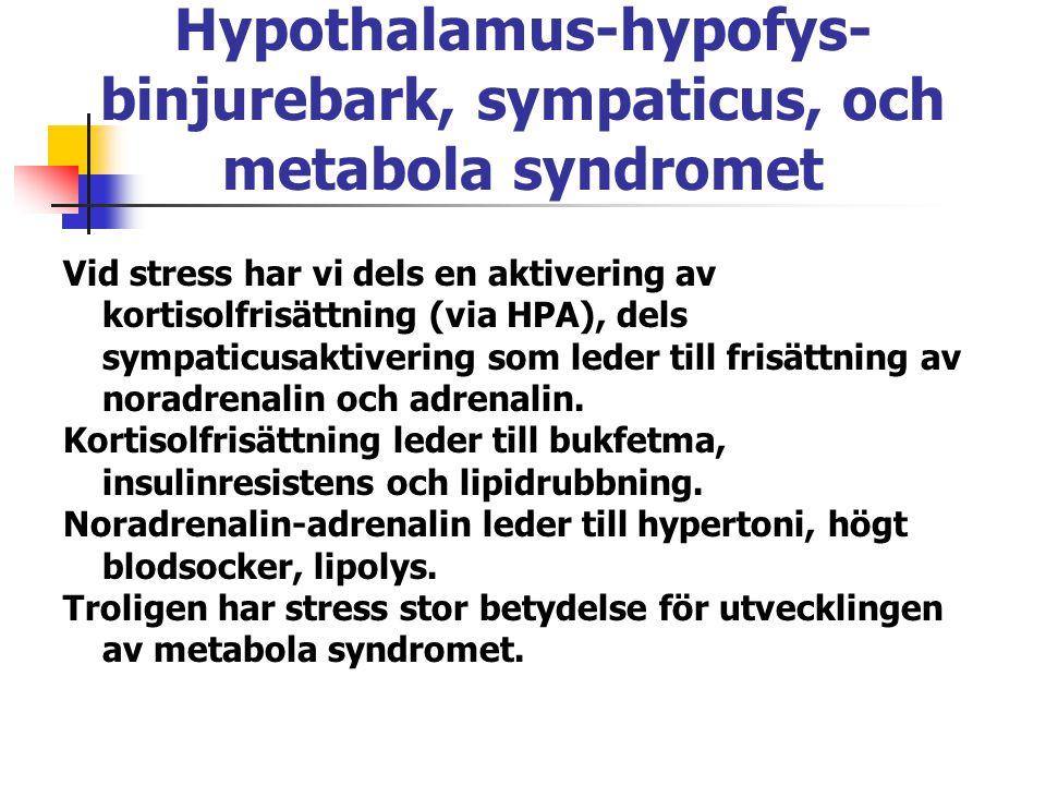 Hypothalamus-hypofys-binjurebark, sympaticus, och metabola syndromet