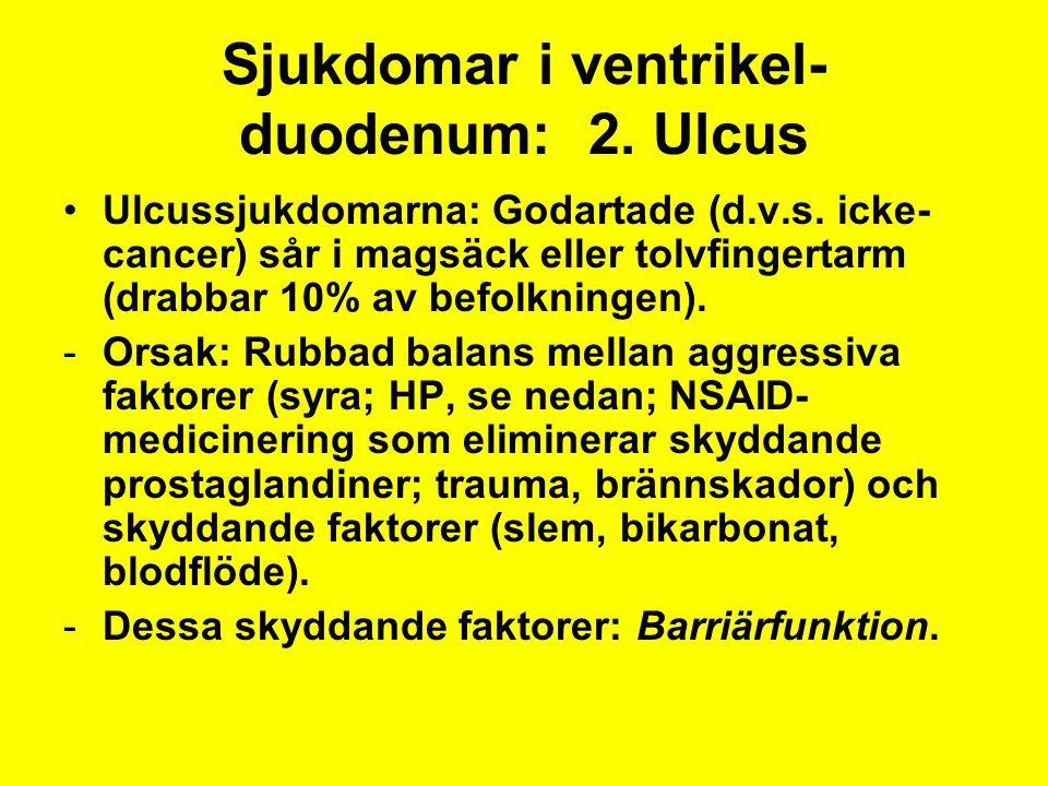 Sjukdomar i ventrikel-duodenum: 2. Ulcus