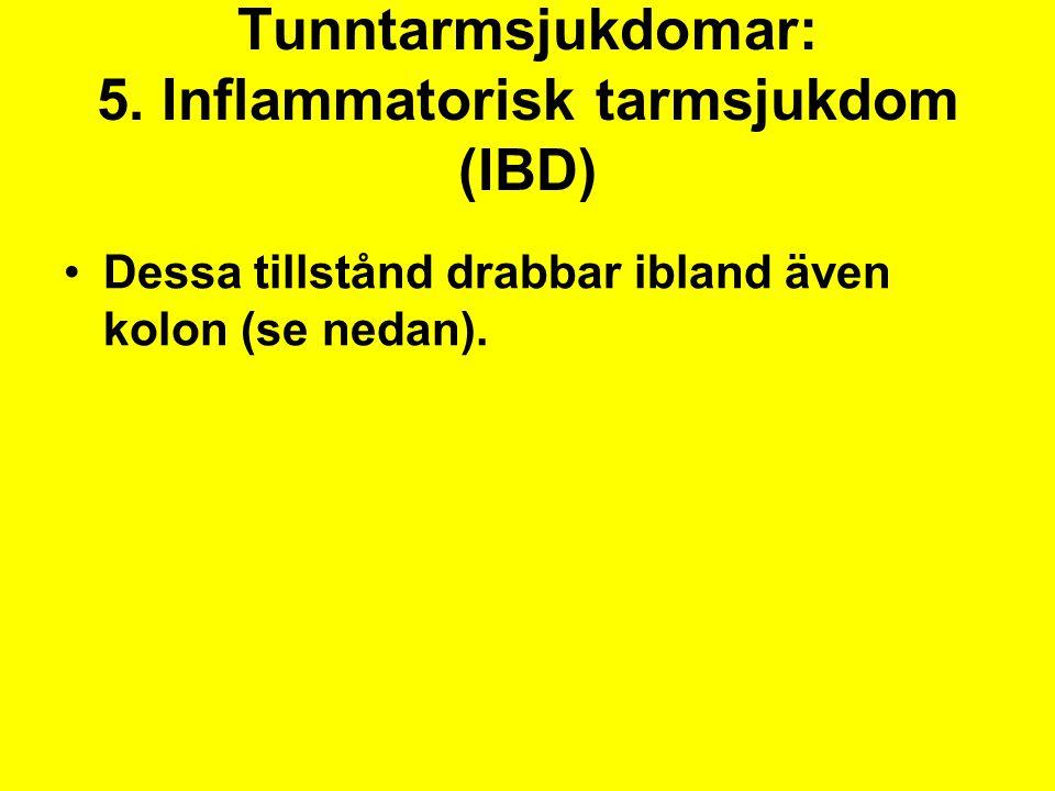 Tunntarmsjukdomar: 5. Inflammatorisk tarmsjukdom (IBD)