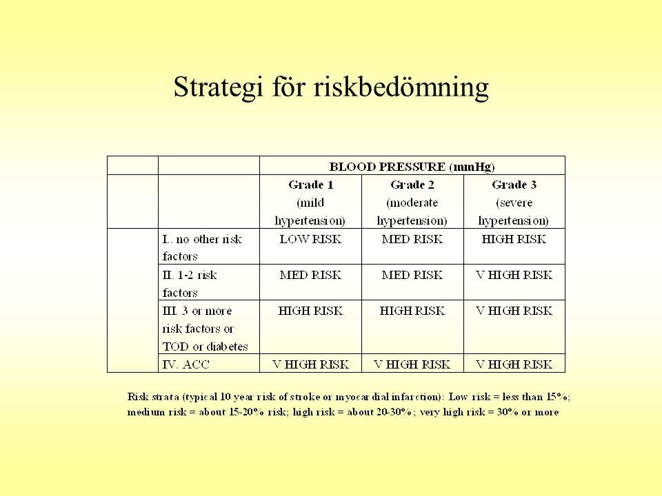 Strategi för riskbedömning