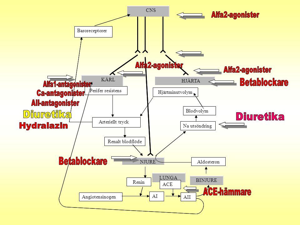 Alfa2-agonister Alfa2-agonister Alfa2-agonister Betablockare