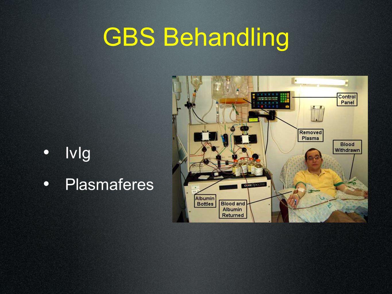 GBS Behandling IvIg Plasmaferes