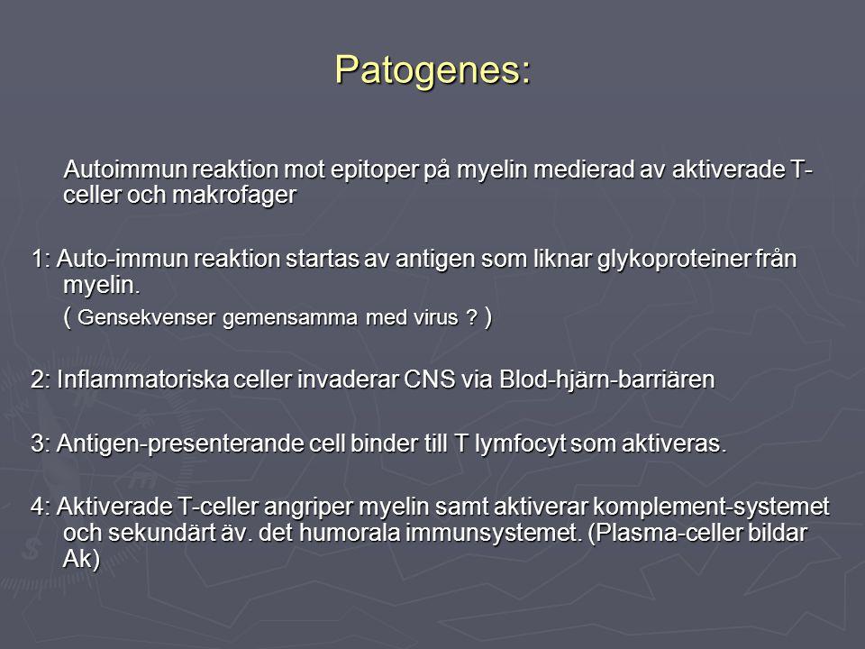 Patogenes: Autoimmun reaktion mot epitoper på myelin medierad av aktiverade T-celler och makrofager.