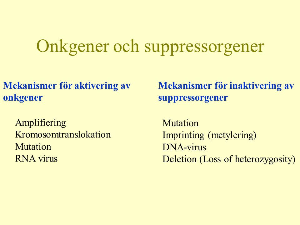 Onkgener och suppressorgener