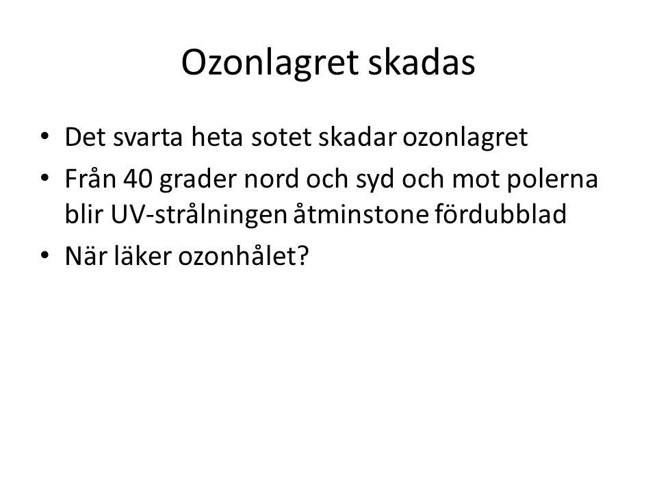 Ozonlagret skadas Det svarta heta sotet skadar ozonlagret