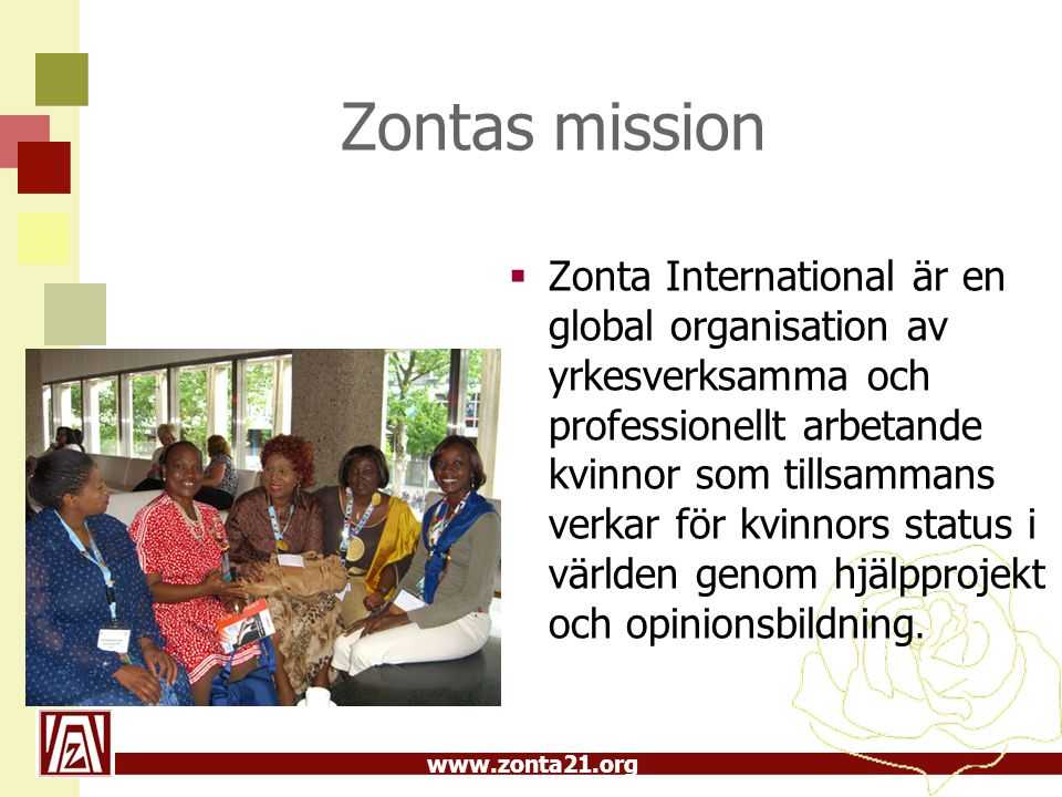 Zontas mission