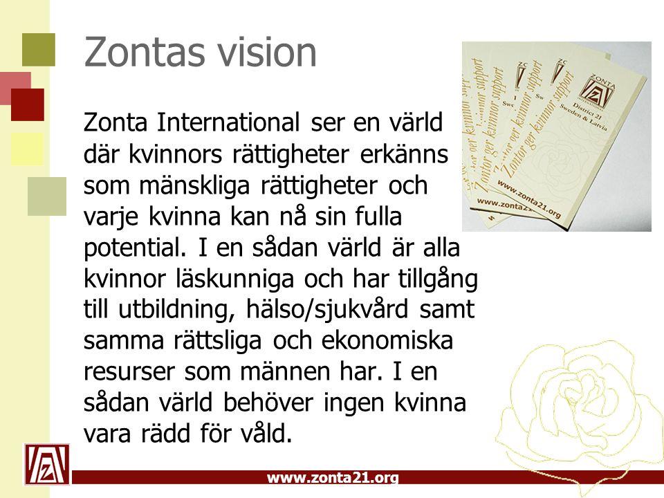 Zontas vision