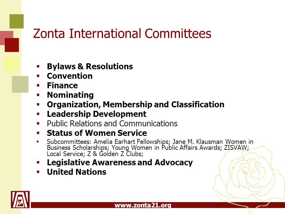 Zonta International Committees