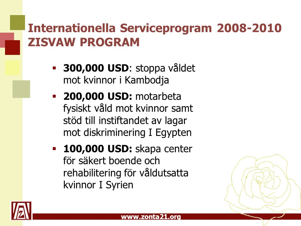 Internationella Serviceprogram 2008-2010 ZISVAW PROGRAM