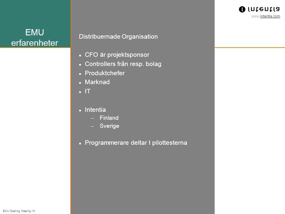 EMU erfarenheter Distribuernade Organisation CFO är projektsponsor
