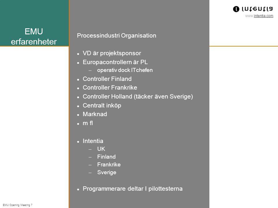 EMU erfarenheter Processindustri Organisation VD är projektsponsor
