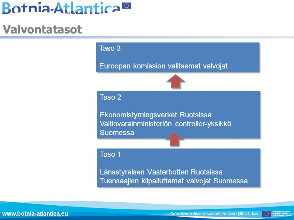 Valvontatasot Taso 3 Euroopan komission valitsemat valvojat Taso 2