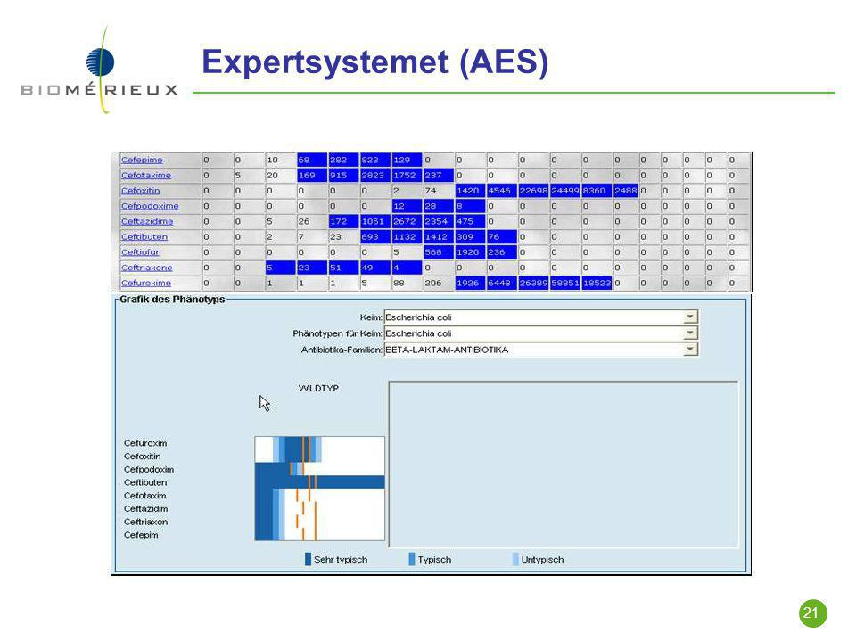 Expertsystemet (AES)