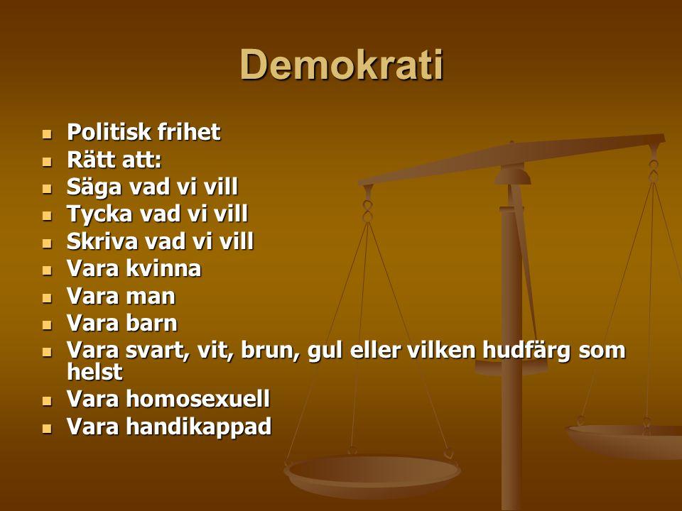 Demokrati Politisk frihet Rätt att: Säga vad vi vill Tycka vad vi vill