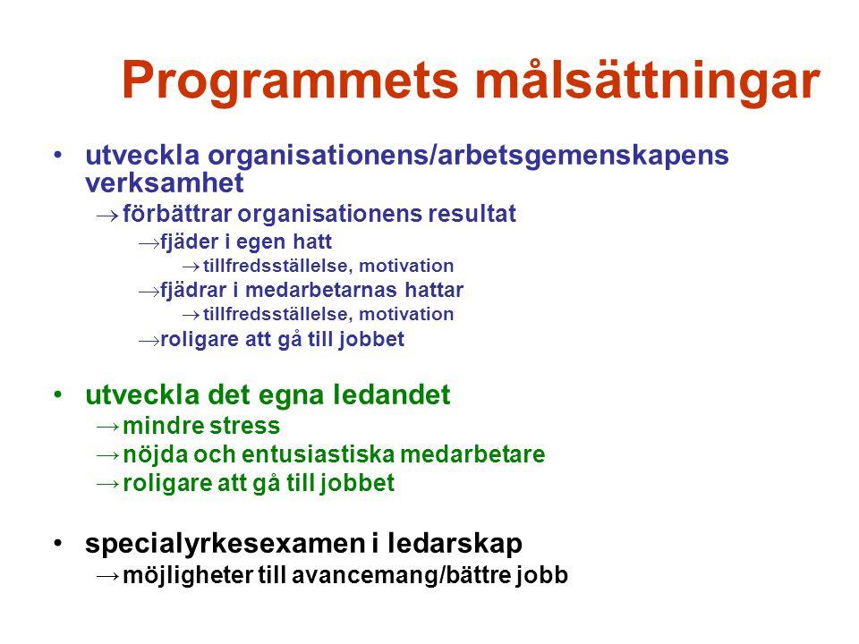 Programmets målsättningar