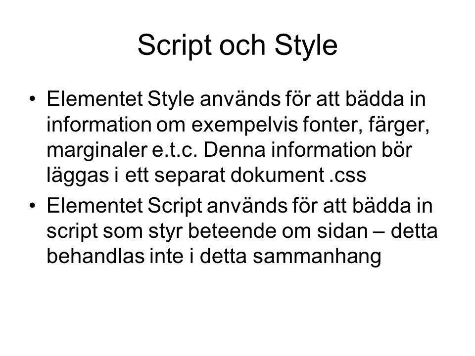 Script och Style